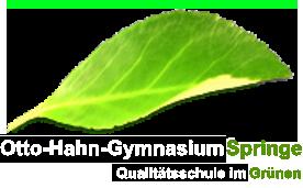 Otto Hahn Gymnasium Springe